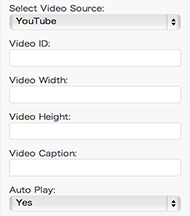 [wordpress] video sidebar widgit